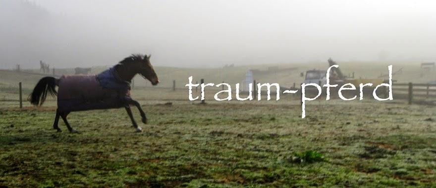 traum-pferd