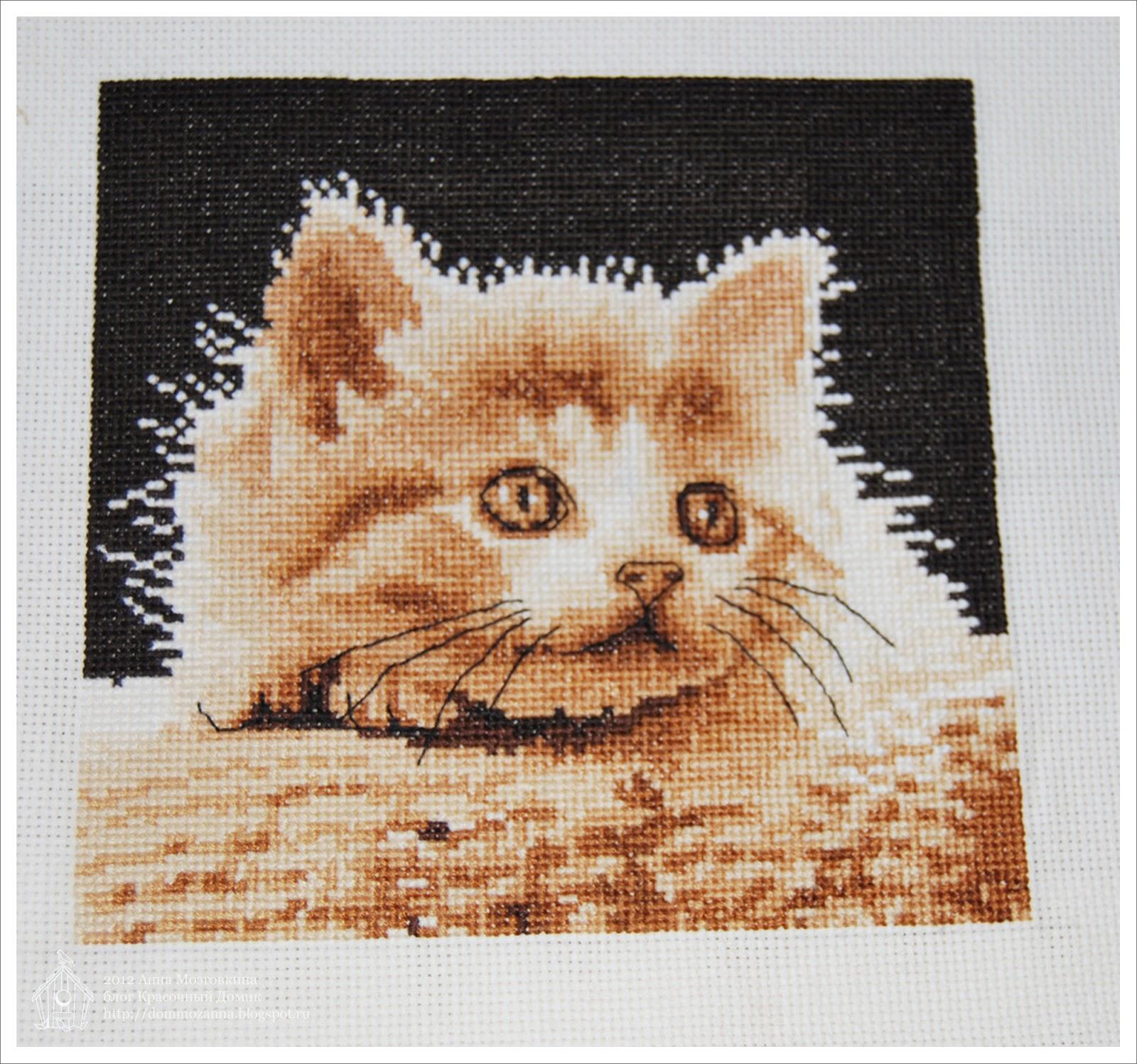 Большеглазый котенок от DMC вышивка крестом