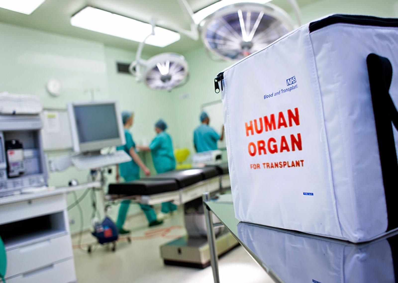 Organ Transplant Causes Personality Change Science Factorama