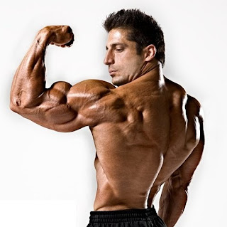 dieta simple, dieta, simple, músculos, musculos, fuerza, masa muscular, subir de peso