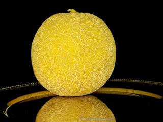 http://fotobabij.blogspot.com/2015/04/melon-galia-cucumis-melo-var.html