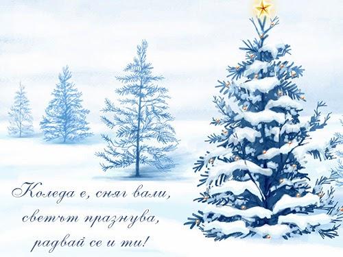 Коледа е, сняг вали, светът празнува, радвай се и ти!