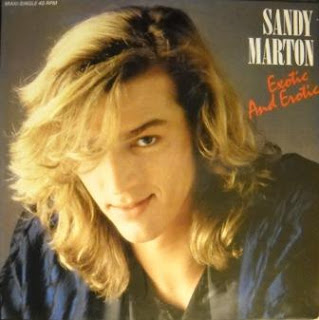 SANDY MARTON - Exotic And Erotic (1986)