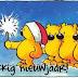 Nieuwjaarswensen: Grappige Nieuwjaarswensen Voor 2016