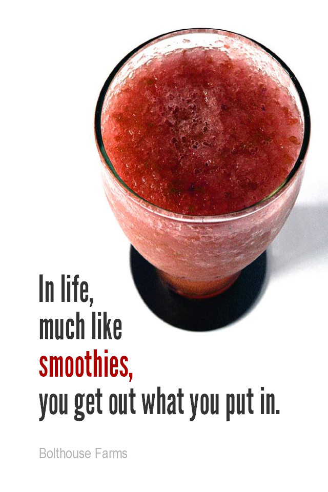 visual quote - image quotation for LIFE - In life, much like smoothies, you get out what you put in. - Bolthouse Farms