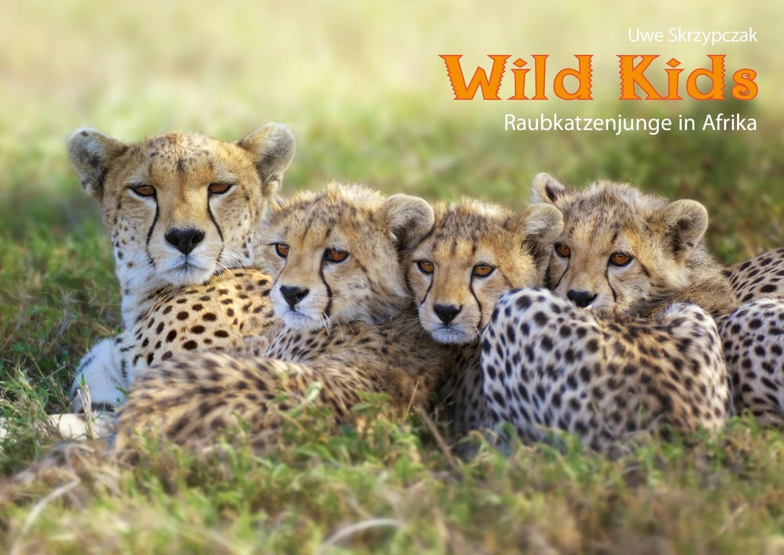 TIERKINDER - Raubkatzenjunge in Afrika. Kalender von Uwe Skrzypczak