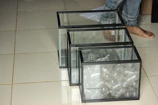 Gex, Kandang Gecko, Acrilic, Akuarium Murah Jambi,