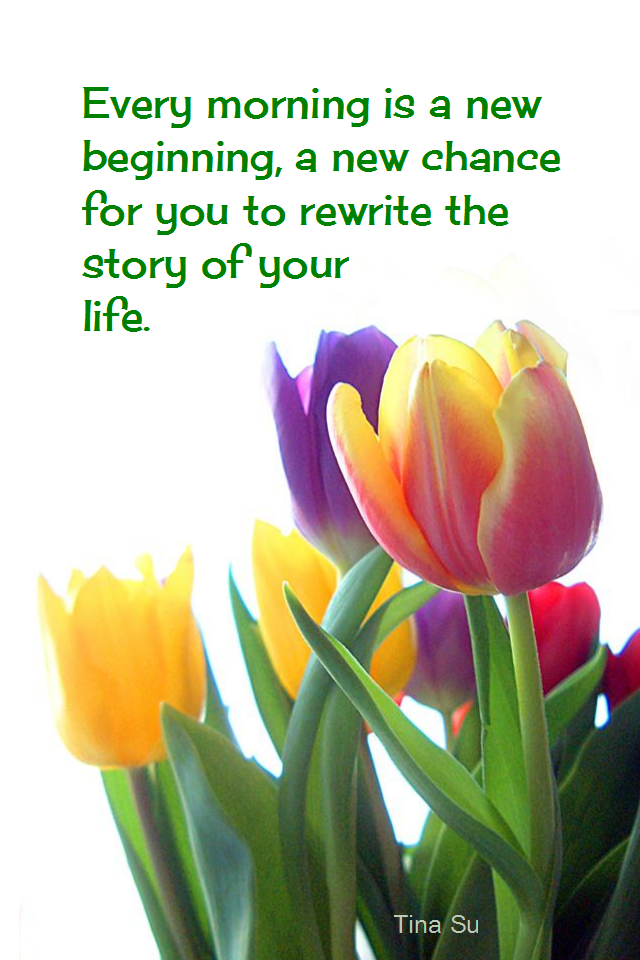 visual quote - image quotation for POTENTIAL - Every morning is a new beginning, a new chance for you to rewrite the story of your life. - Tina Su