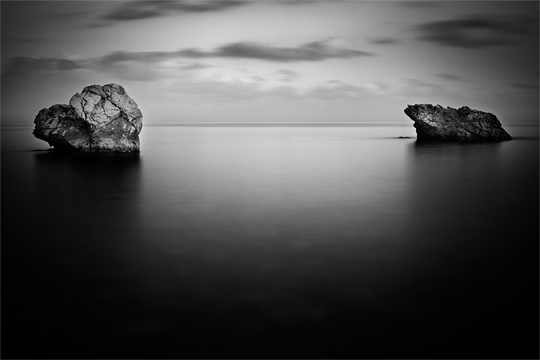 Black And White Nature Pictures