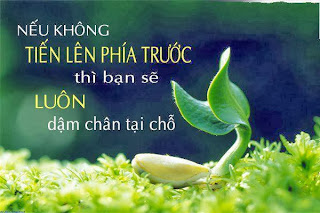 danh ngon hay ve cuoc song