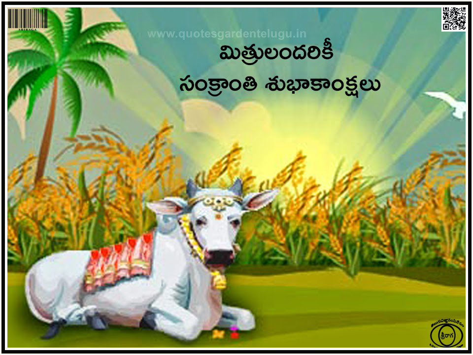 sankranti essay in telugu The 'big festival' or more aptly known as the 'peda panduga' in andhra, sankranti is a harvest festival that has people from all over the state and country heading back home for the festivities.