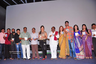 Writer-Movie-Audio-Launch-Stills