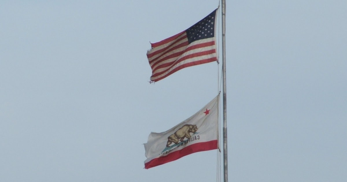 Bear Flag Museum: 2007 California Bear Flag over ... Bear