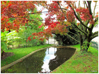 Blog photos de patrice balade d 39 automne grenoble - Bassin jardin japonais grenoble ...