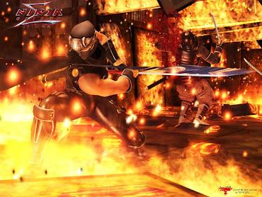 #21 Ninja Gaiden Sigma Wallpaper