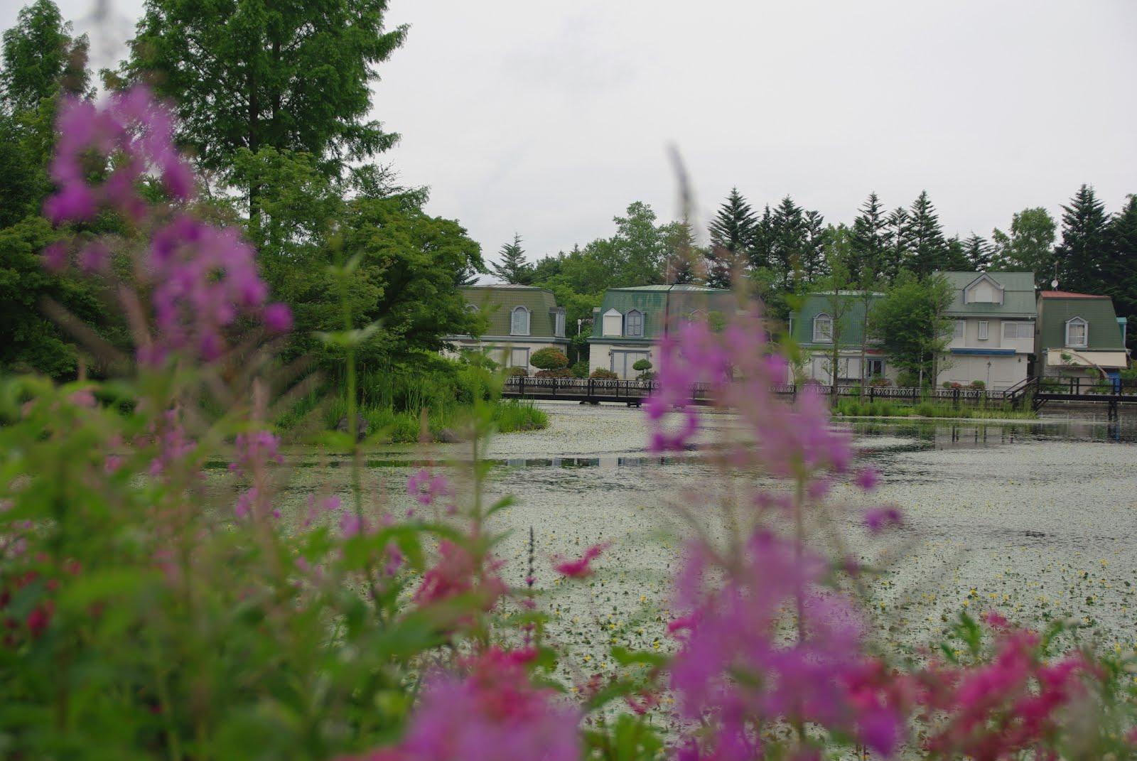 ブロガー自薦の観光ガーデン1・訪問時期により印象が変わることをご了承ください