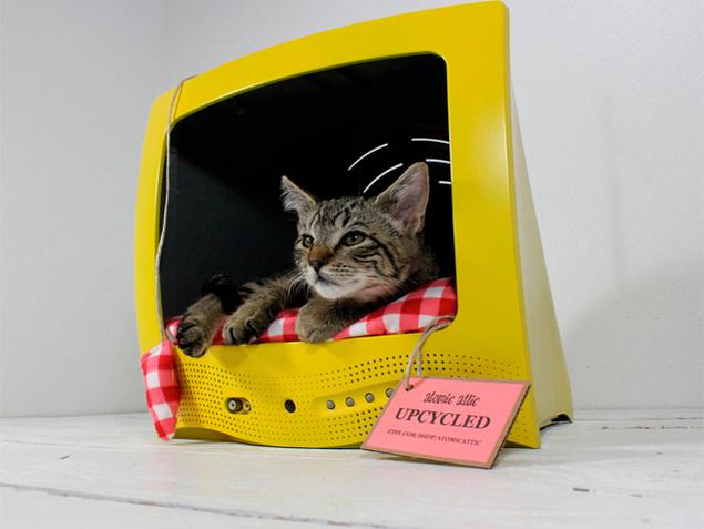 8 buenas ideas de camas originales para mascotas todo for Cama para gatos