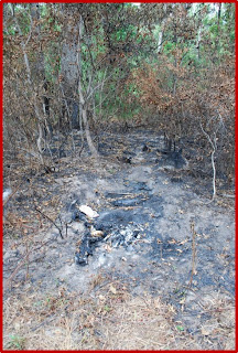 The crime scene in Porter where Applegate's burned remains were discovered.