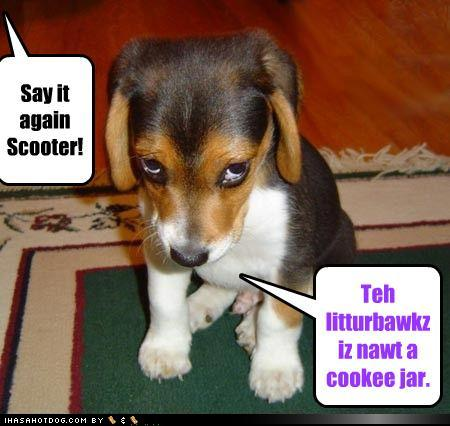 The Teach Zone Really Funny Dogs Funny Dog Works Comictube