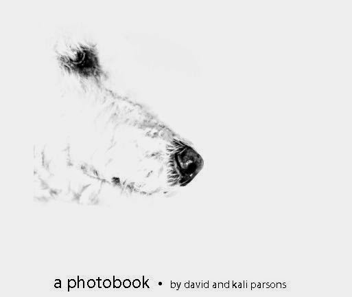 """A Photobook"" by David and Kali Parsons... A story of Central Texas told through photos and poetry."