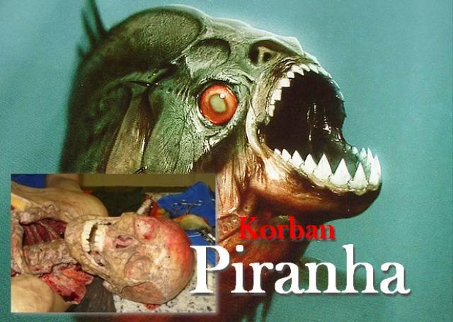 ... di Bolivia Utara tewas karena digigit ikan piranha di Sungai Yata