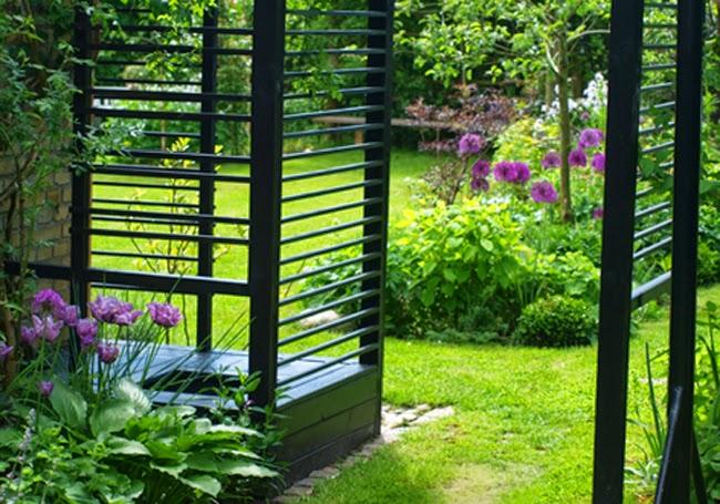 """En moderne have med sorte konstruktioner og markante blomsterbede i lilla toner med prydsløg Allium """"purple Sensation"""" og blå tulipan Blue Parrot"""