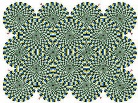 ilusiones opticas, movimiento, serpientes, efectos visuales, ilusiones ópticas, ilusion de las serpientes,