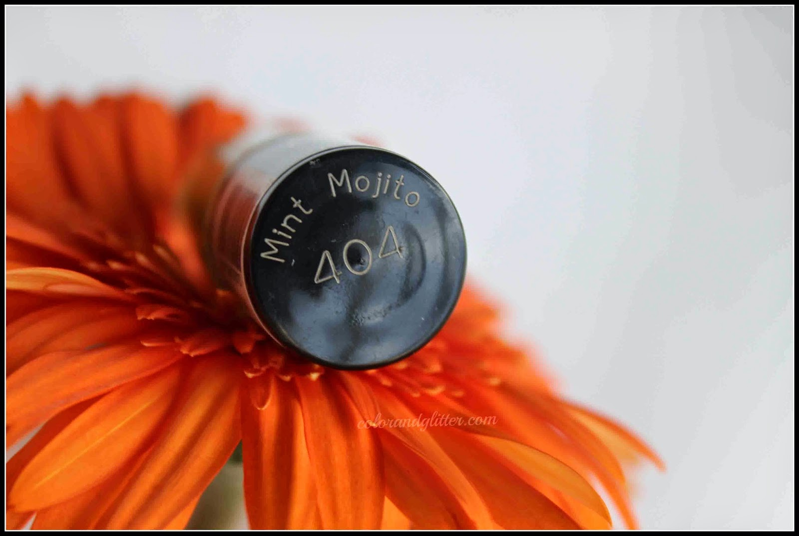 Maybelline Color Show Nail Polish in Mint Mojito (color number 404)    Review and Swatches