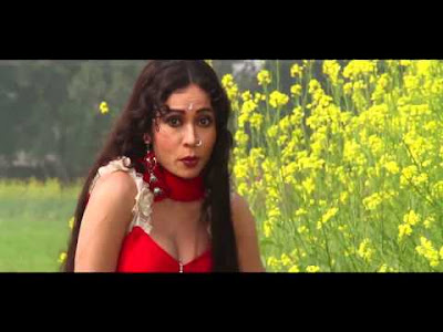 Ghayal Sher (2013) Bhojpuri Movie Trailer