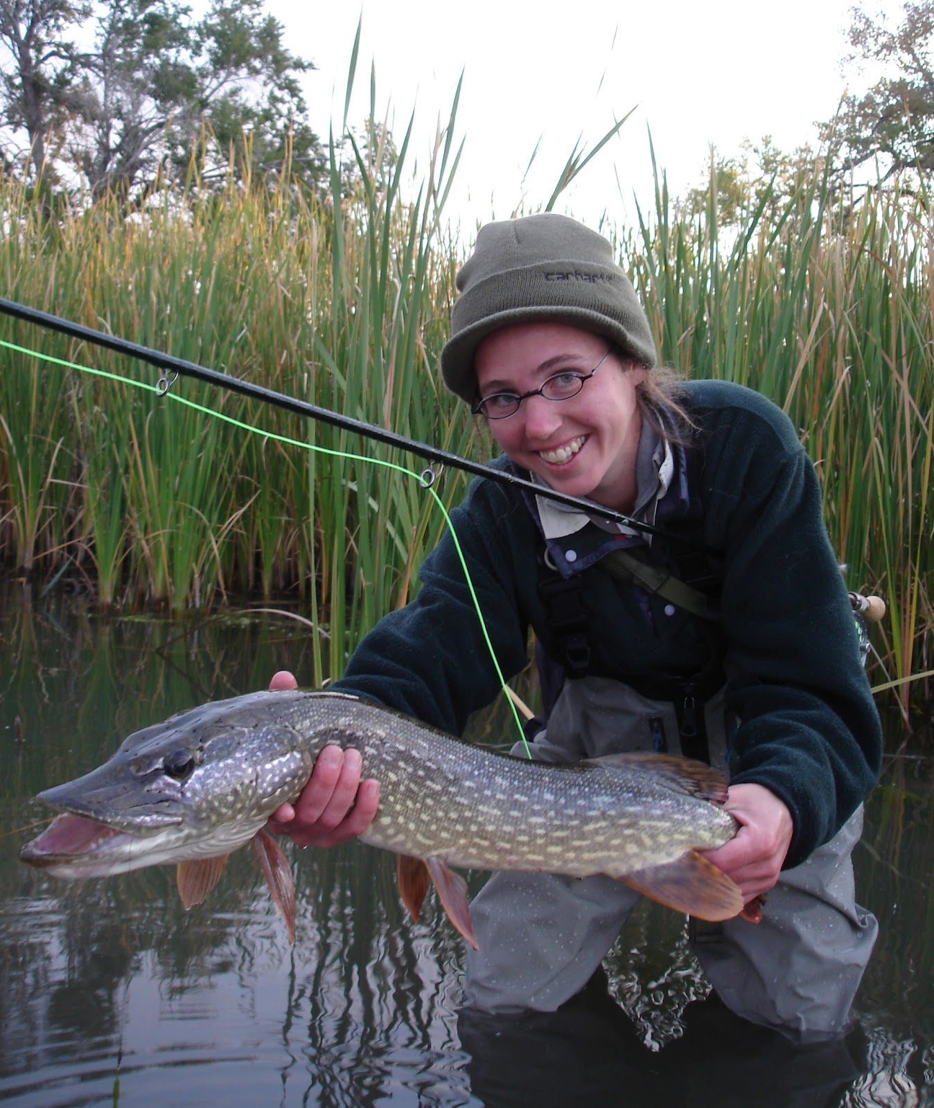 Colorado fly fishing reports september 2012 for Pike fishing colorado