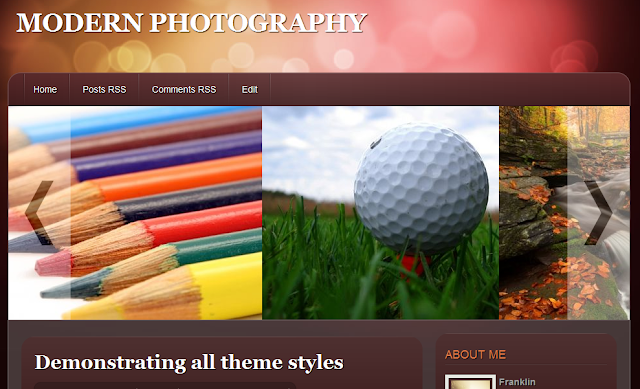 Modern Photography Blogger Templates