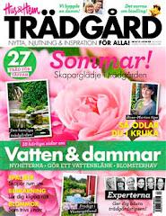 Reportage från min trädgård i Hus & Hem Trädgård med mina egna foton och egen text Juli 2012