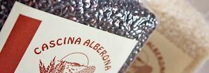 Collaborazione Cascina Alberona