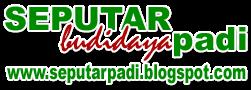 Blog Seputar Budidaya Tanaman Padi