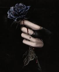 A Mão que Machuca a Rosa