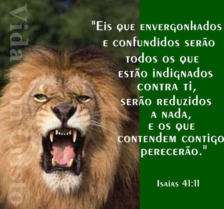 Evangelização Espirito Santo E Leão Da Tribo De Juda