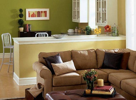 Living room paint ideas picture