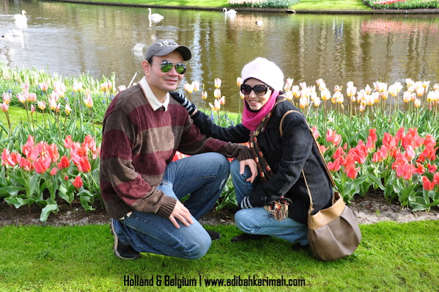 holiday to holland and belgium with premium beautiful at keukenhof with dr hasbi dalam taman tulips