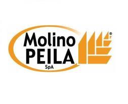 Il Molino Peila SpA è stato creato agli inizi del 1900 da Domenico Peila per la produzione di fari