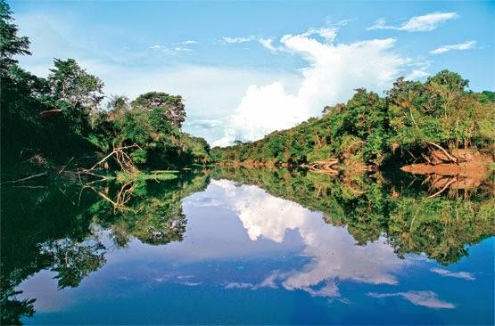 Regiones Naturales y Áreas Naturales Protegidas - Ejemplos