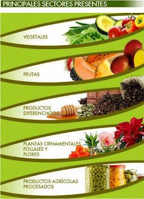 Antigua Guatemala será la sede de  Agritrade 2013