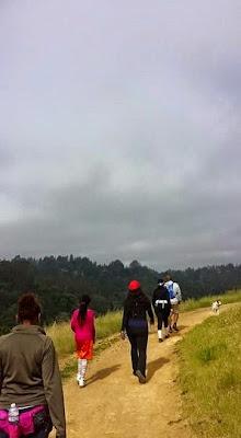 Hiking Tilden Nature Area, Hiking, Tilden Park, Exercise