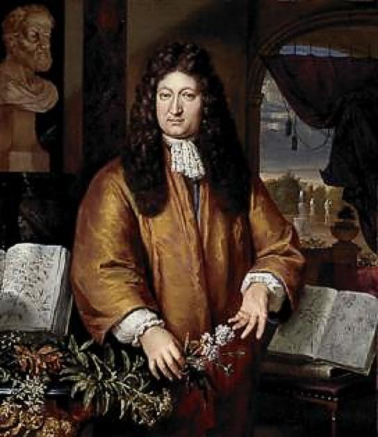 Jan Commellin - Plantas de interior
