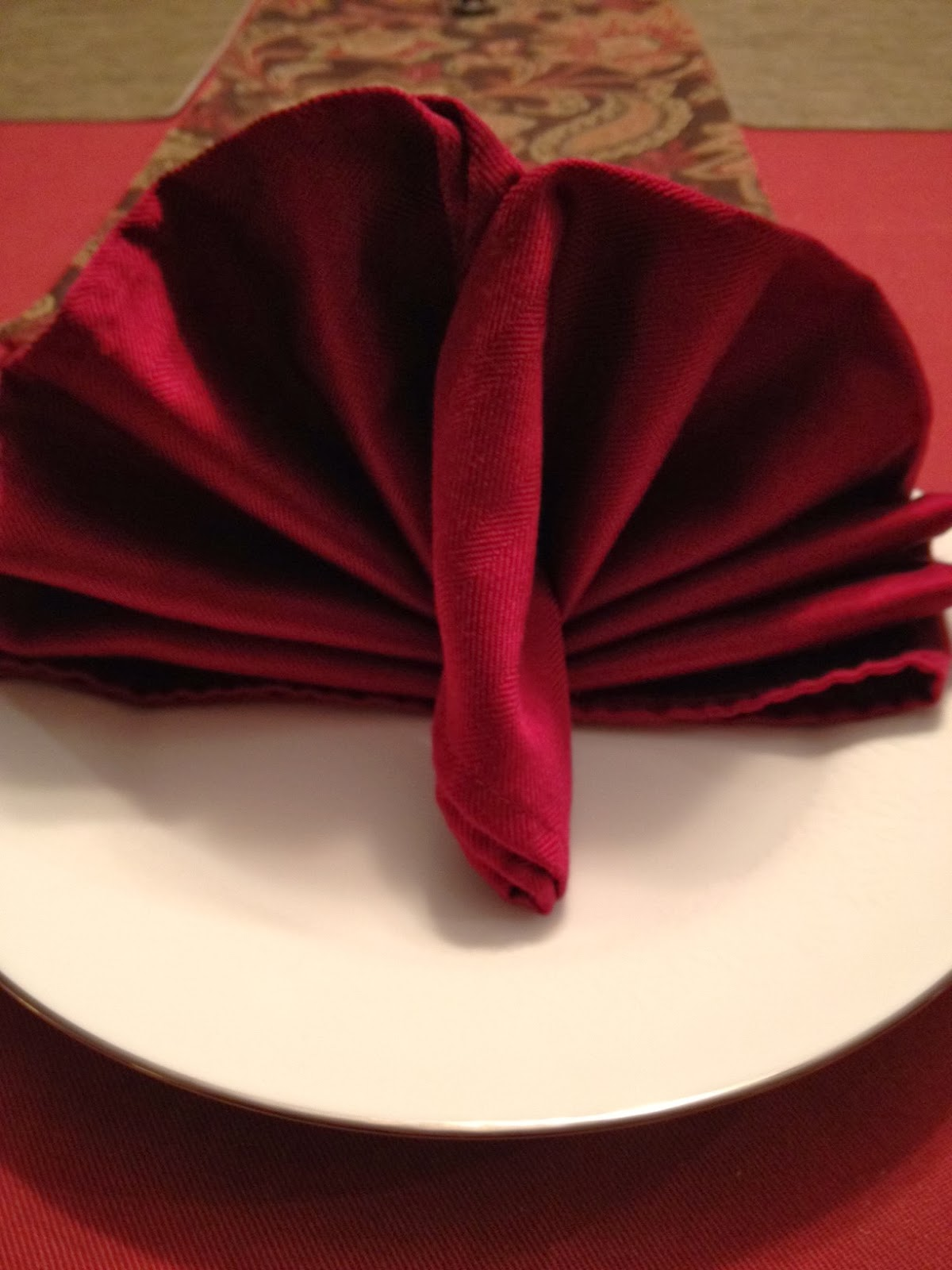 Twins in the cities turkey napkin fold for Turkey napkins