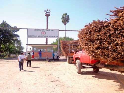 Ministerio no autorizará exportar azúcar, ni alcohol de Iabsa