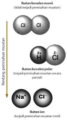 Rentang kepolaran ikatan berada di antara ikatan kovalen murni dan ikatan ion