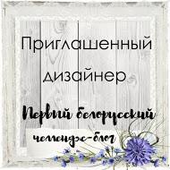 """Я приглашенный дизайнер """"Первого белорусского!!"""