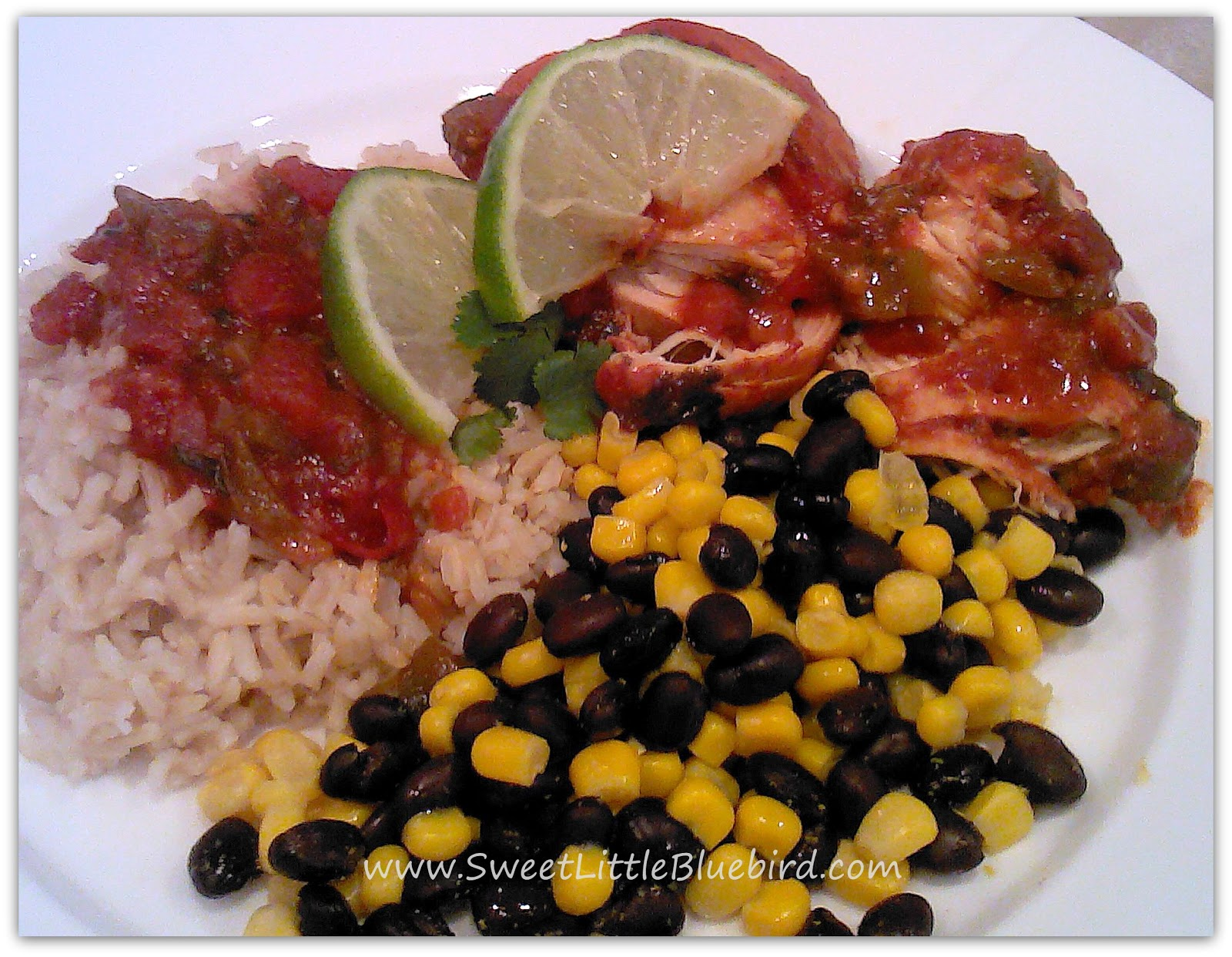 ... : Tried & True Tuesday ~ Slow Cooking ~ Green Chile Salsa Chicken