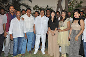 Kakathiyudu trailer launch-thumbnail-13