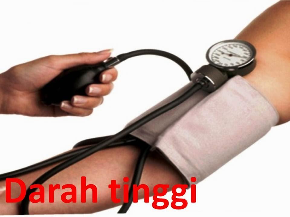 pengobatan herbal darah tinggi